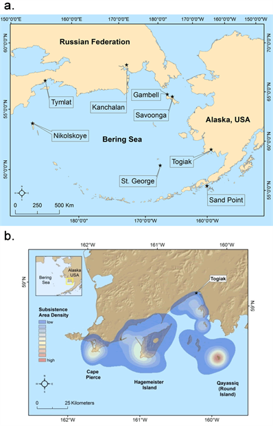 Map showing the eight Bering Sea communities that comprise CONAS and example of community-based observing network data