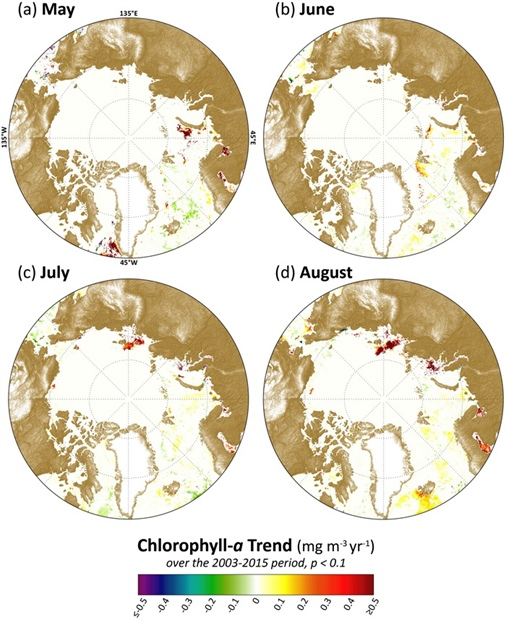 Linear trends in satellite-based chlorophyll-a data across the pan-Arctic region