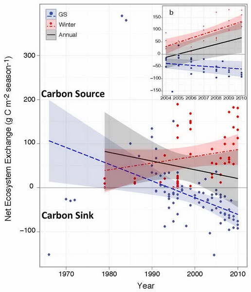 Net exchange of carbon dioxide between tundra and the atmosphere