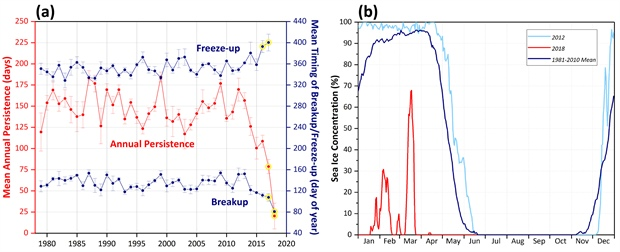 Graphs of sea ice variability and daily time series of sea ice concentration