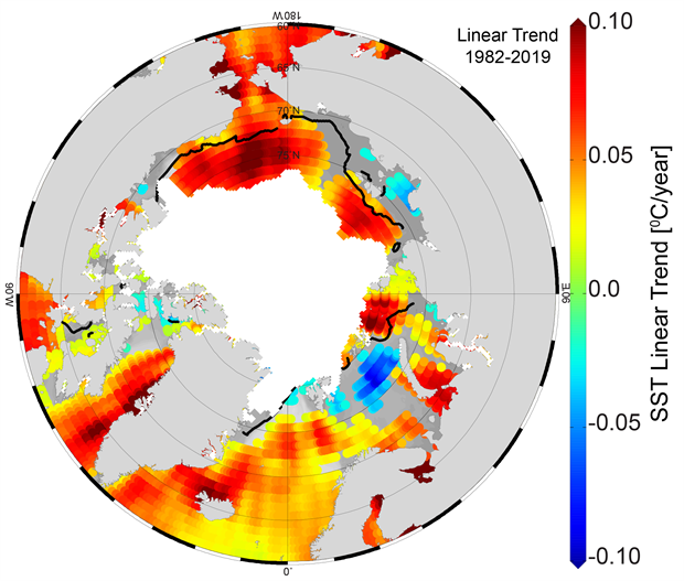 Map of linear SST trend for August of each year from 1982–2019